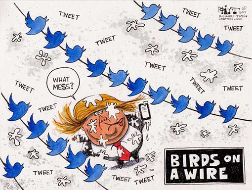 tweety-birds.jpg